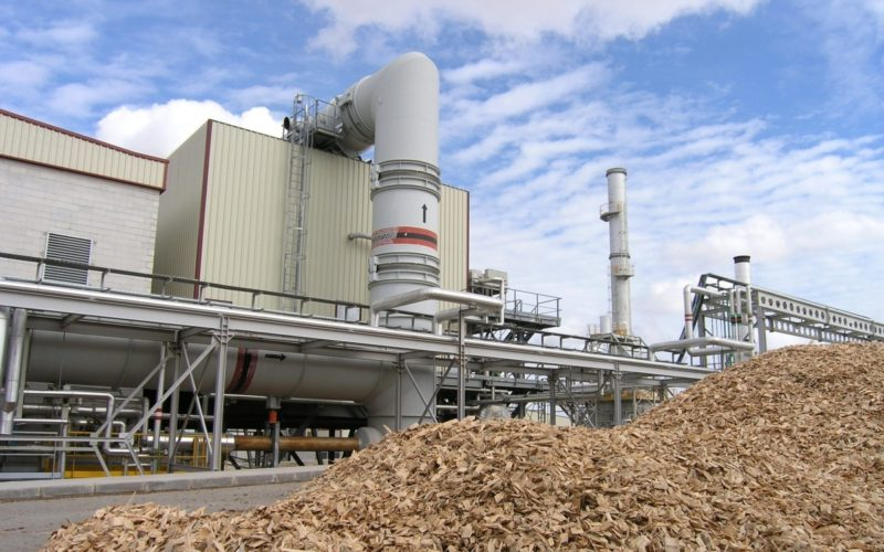 Prospects for the electricity generation from biomass in Ukraine – UABIO Position Paper 5