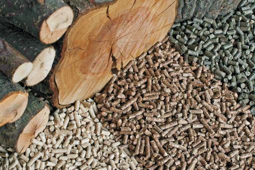 Аналіз додаткових джерел деревного палива в Україні – Аналітична записка UABIO 15