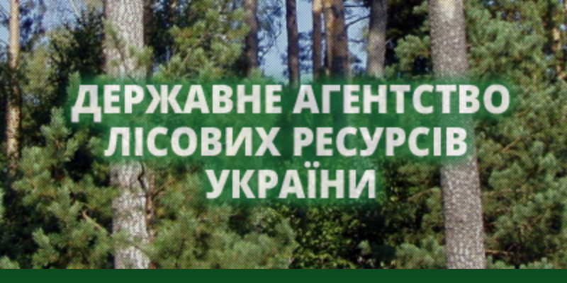 state forestry agency of Ukraine