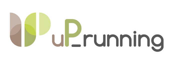 logo uprunning2