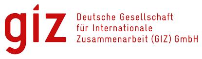 giz logo 2