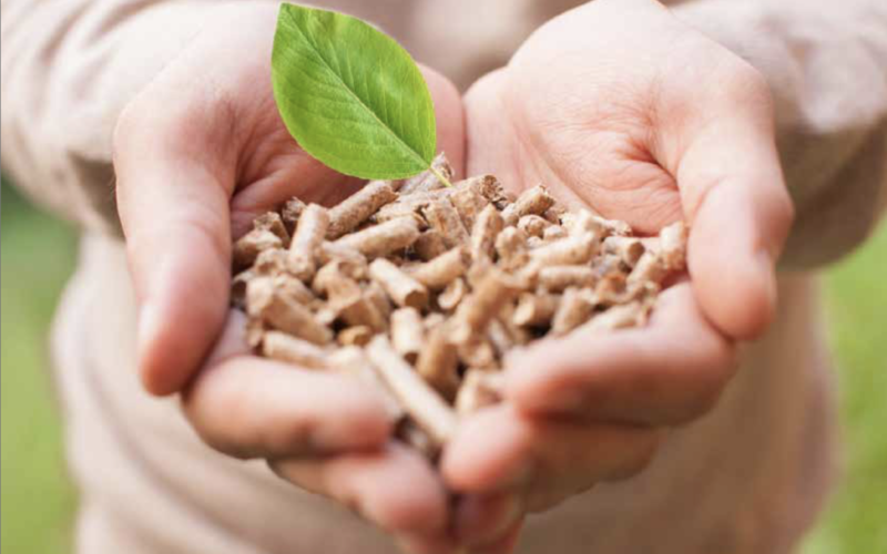 Manual for environmentalists on the use of biomass as a fuel in the municipal sector