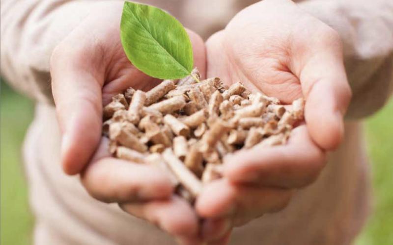Посібник для екологів з використання біомаси як палива у муніципальному секторі