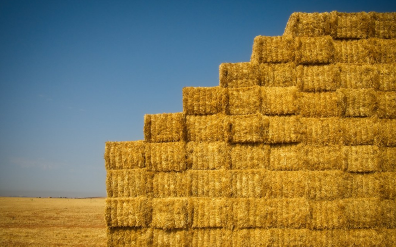 Analysis of barriers to the production of energy from agrobiomass in Ukraine – UABIO Position Paper 21