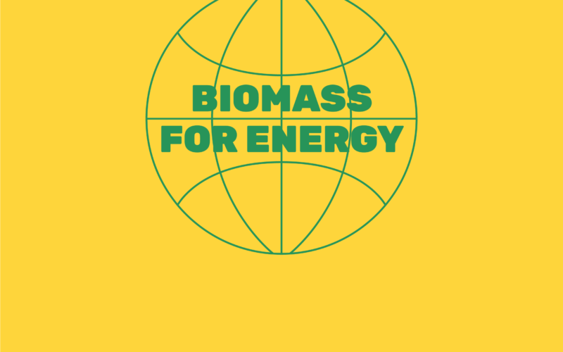 International Conference «Biomass for Energy»