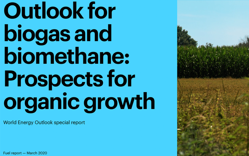 Global outlook for biogas and biomethane by IEA 2020