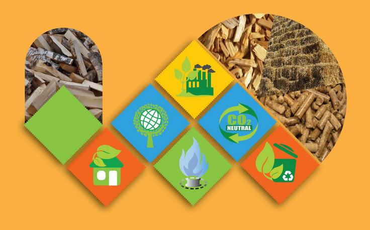 Посібник АВЕ «Підготовка та впровадження проектів заміщення природного газу біомасою при виробництві теплової енергії в Україні»