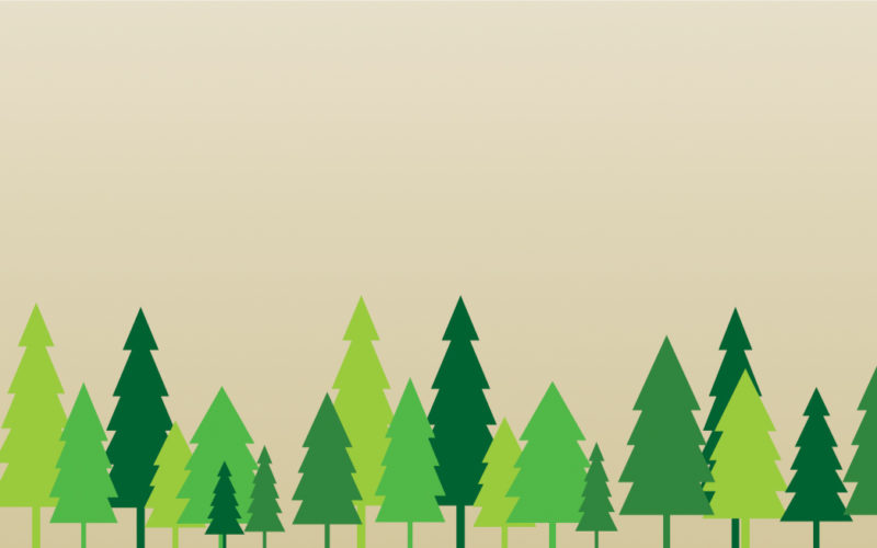 MYTH: The development of bioenergy involves total deforestation