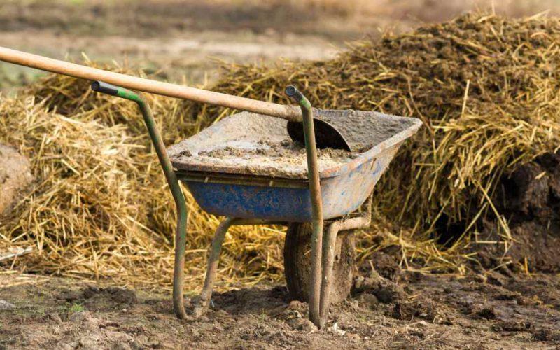 Види органічних добрив, що виробляються в Україні, та їх ринкові ніші