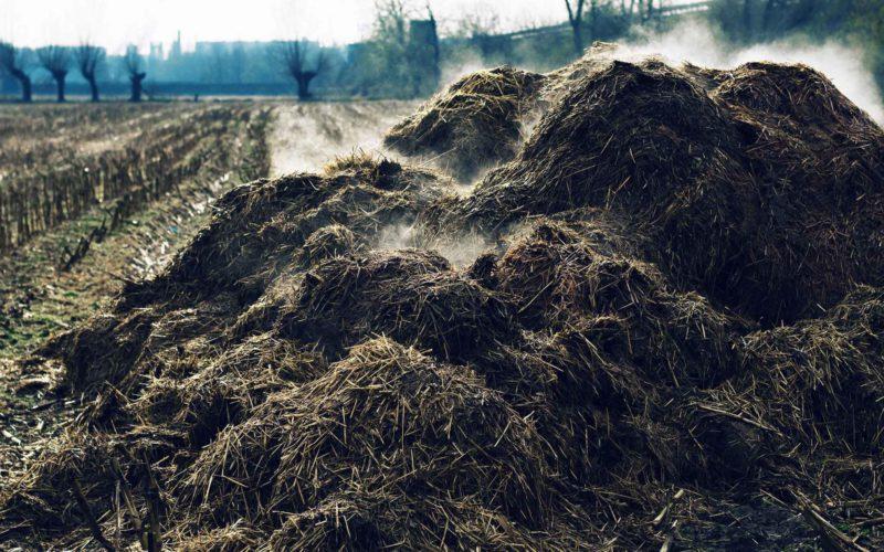 Споживання органічних добрив в Україні