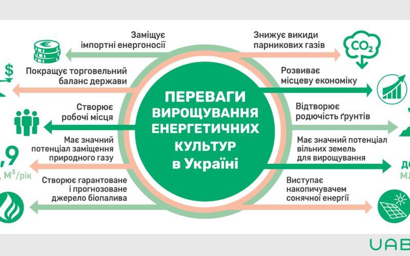 Переваги вирощування енергетичних культур в Україні