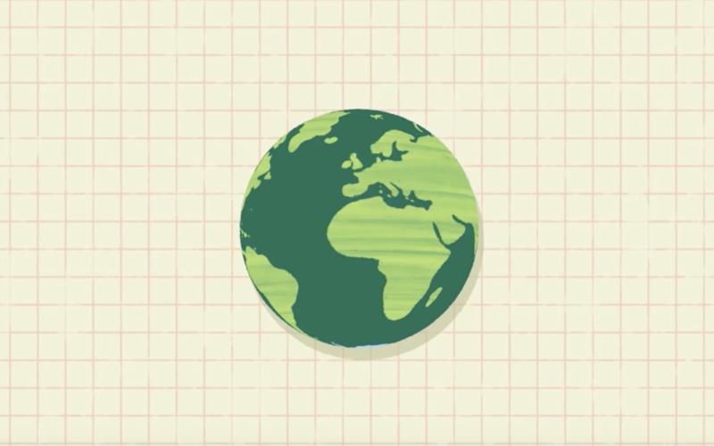 Міскантус — це відновлюване джерело енергії, яке скорочує викиди вуглецю та покращує якість ґрунтів