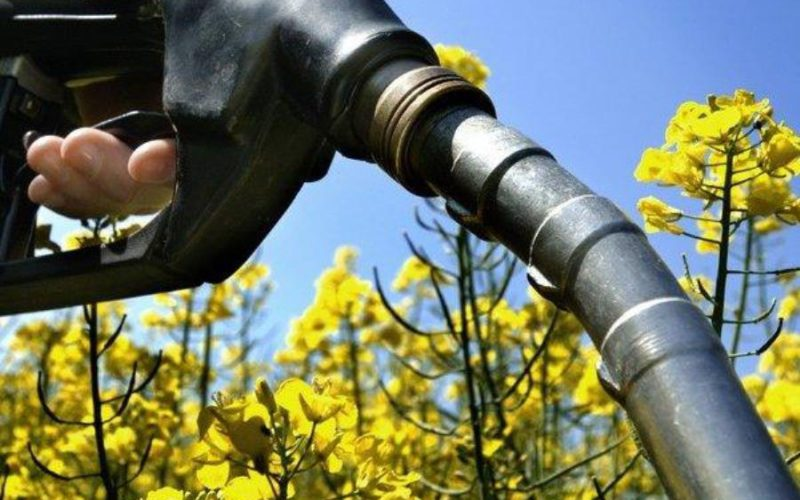 Bioethanol: UTC experience