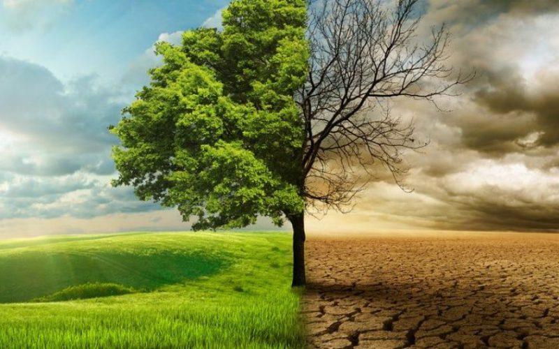 """Матеріали Онлайн-семінару """"Огляд кліматичних дій та переходу до сталої енергетики в Україні"""""""
