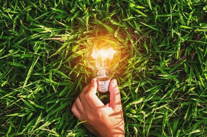 Аналітика UABIO: Виробництво електроенергії з біомаси і біогазу – листопад 2020