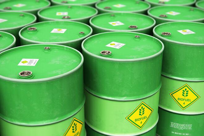 Ukraine can produce the cheapest biomethane in Europe – Georgii Geletukha