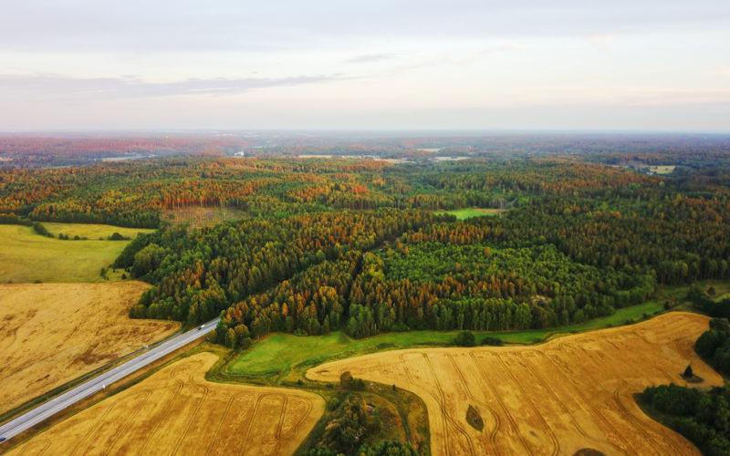 Місце біоенергетики в проєкті оновленої енергетичної стратегії України до 2030 року