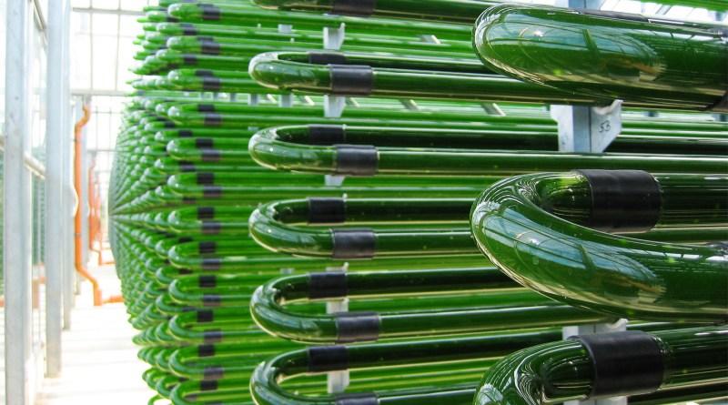 Георгій Гелетуха: Біометан – відновлюваний газ, що збереже планету