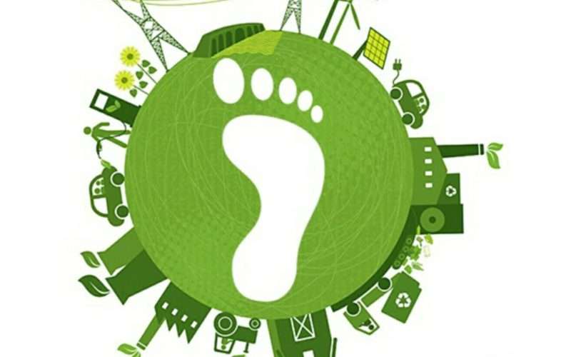 Negative carbon footprint and biogas and biomethane production