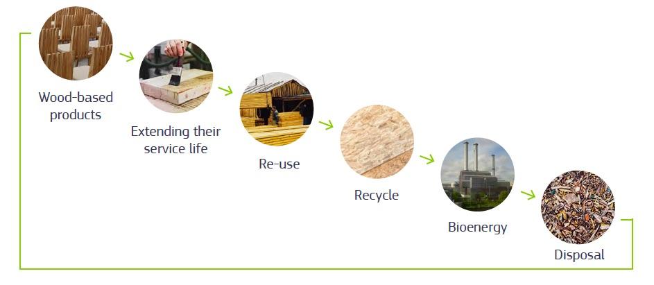 cascading principle of biomass use
