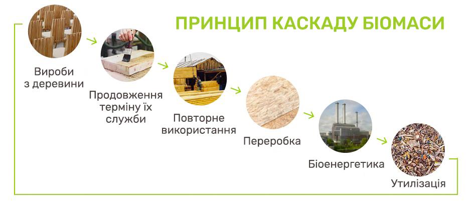 Kaskad biomasy SAF